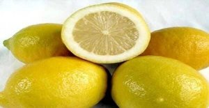 çekirdeksiz limon