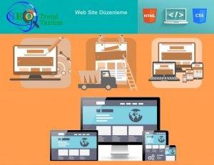 web sitesi düzenleyerek para kazanmak