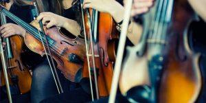 müzik sektörü